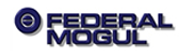Federal-Mogul manufactures automotive components